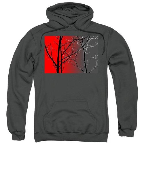 Red And Gray Sweatshirt