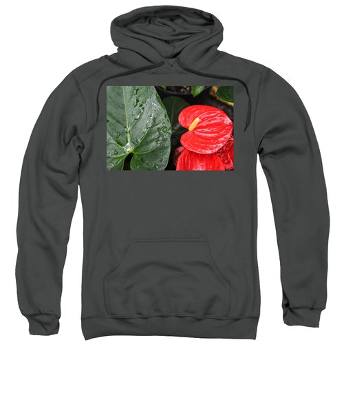 Red Anthurium Flower Sweatshirt