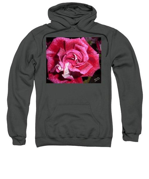 Red Beauty 2  Sweatshirt