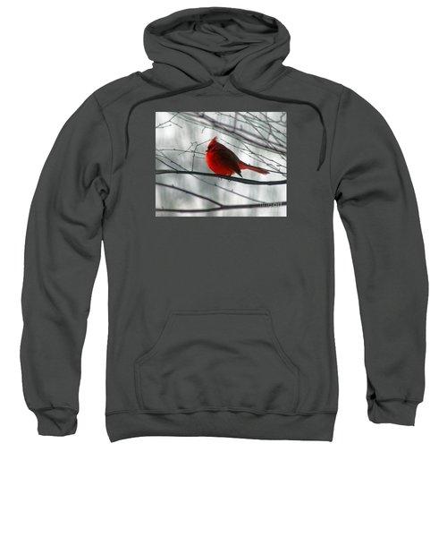 Red Cardinal On Winter Branch  Sweatshirt