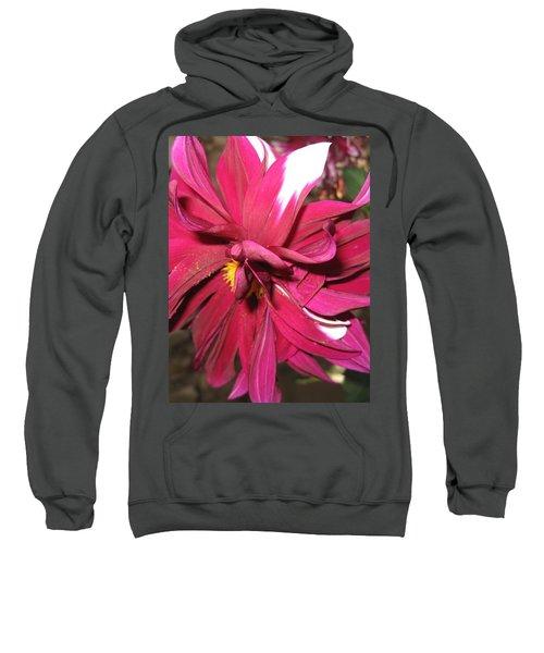 Red Flower In Bloom Sweatshirt