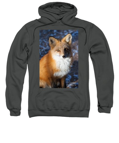 Red Fox Standing Sweatshirt