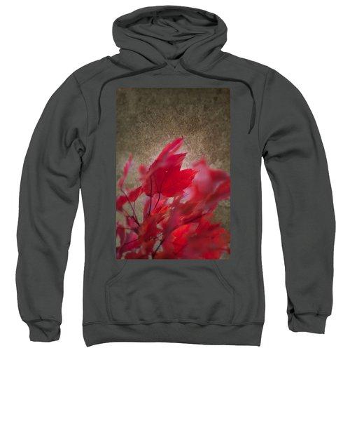 Red Maple Dreams Sweatshirt