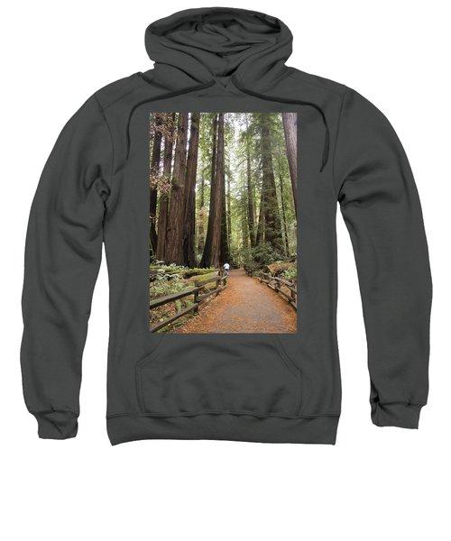 Redwood Trees Sweatshirt