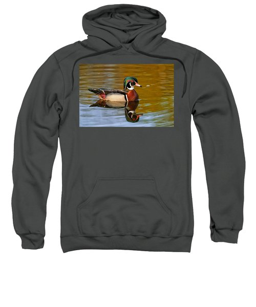 Reflecting Nature's Beauty Sweatshirt