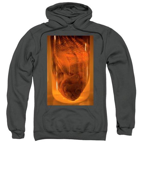 Research Specimens Sweatshirt