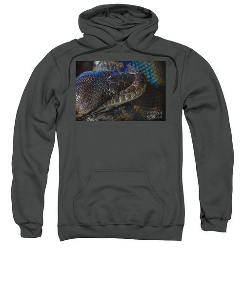Reticulated Python With Rainbow Scales Sweatshirt
