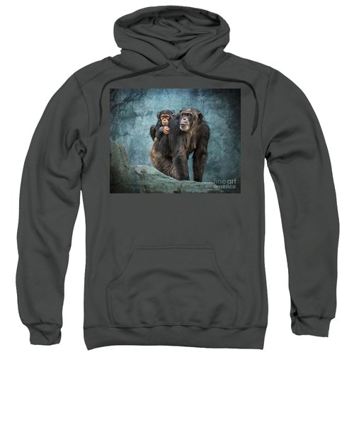 Ride Along Sweatshirt by Jamie Pham