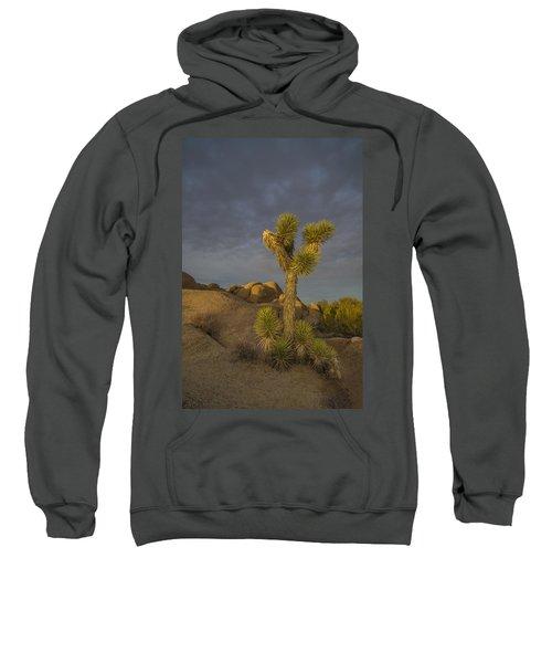 Reaching For The Sky Sweatshirt
