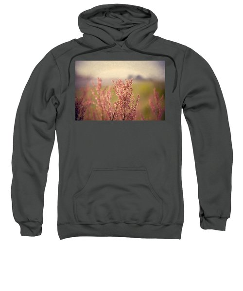 Roadside Beauty Sweatshirt