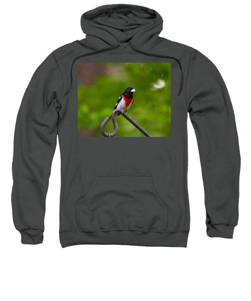 Rose Breasted Grosbeak Sweatshirt