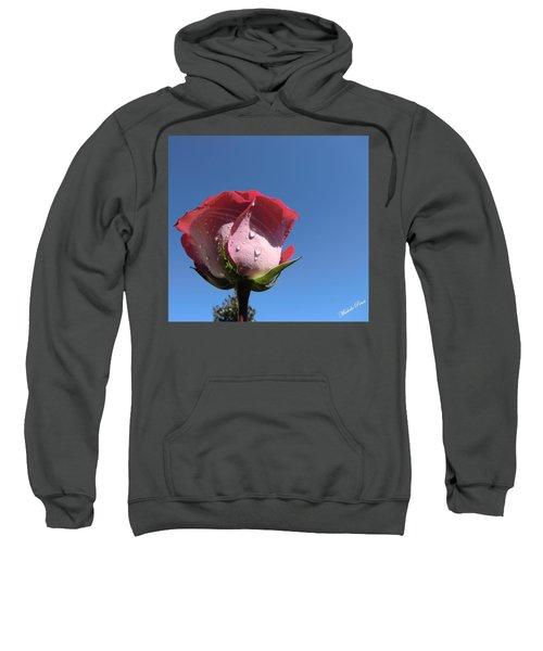 Excellence  Sweatshirt
