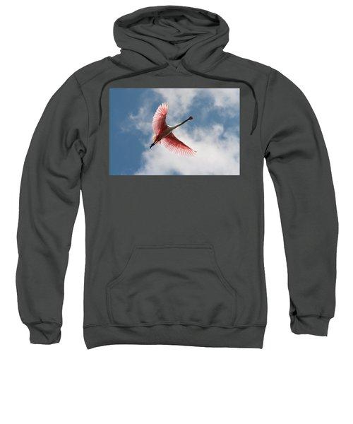 Roseate Soaring Sweatshirt
