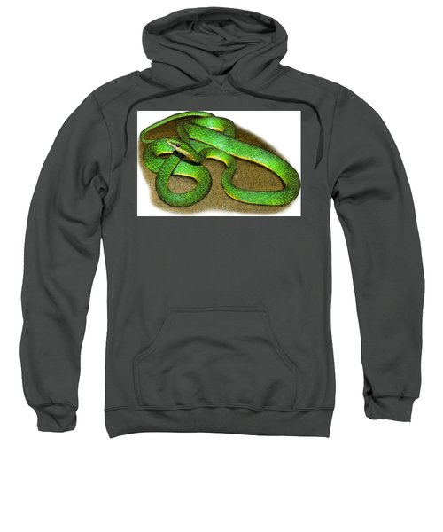 Rough Green Snake, Illustration Sweatshirt