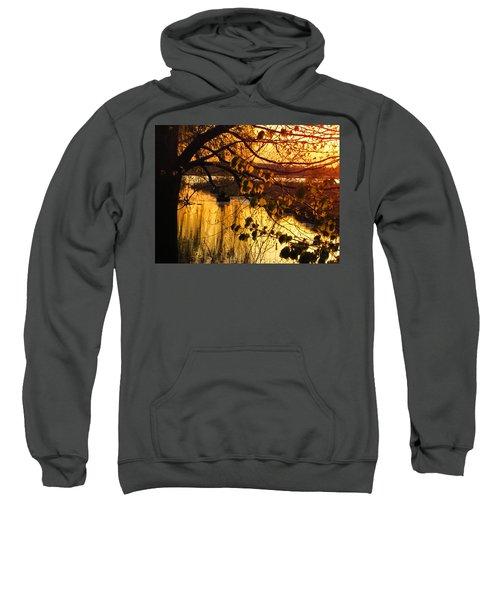 Rowboat Sweatshirt