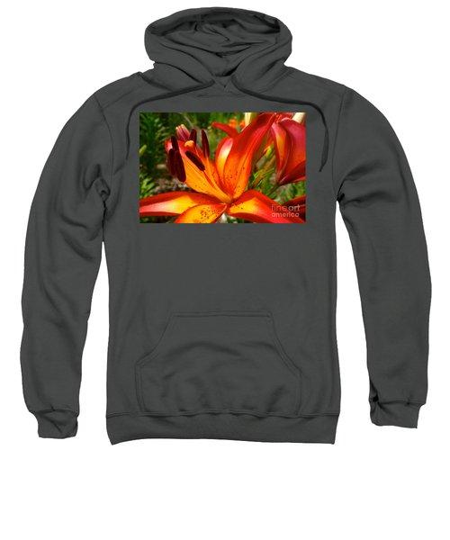 Royal Sunset Lily Sweatshirt