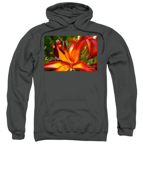 Royal Sunset Lily Sweatshirt by Jacqueline Athmann