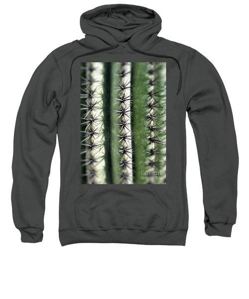 Saguaro Catus Needles Sweatshirt
