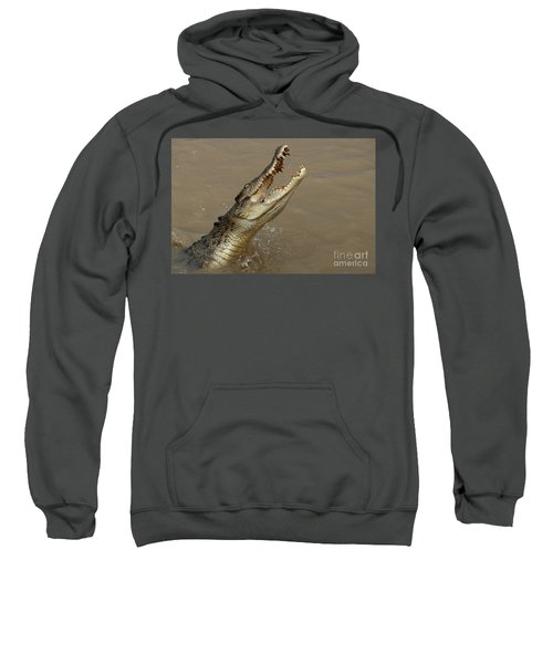 Salt Water Crocodile Australia Sweatshirt by Bob Christopher