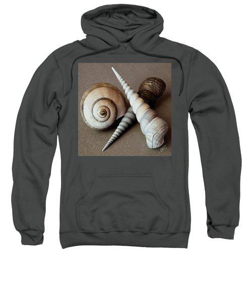 Seashells Spectacular No 24 Sweatshirt