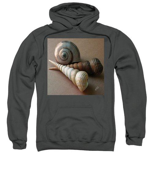 Seashells Spectacular No 29  Sweatshirt