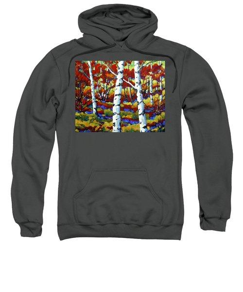 Season Of Fire By Prankearts Sweatshirt