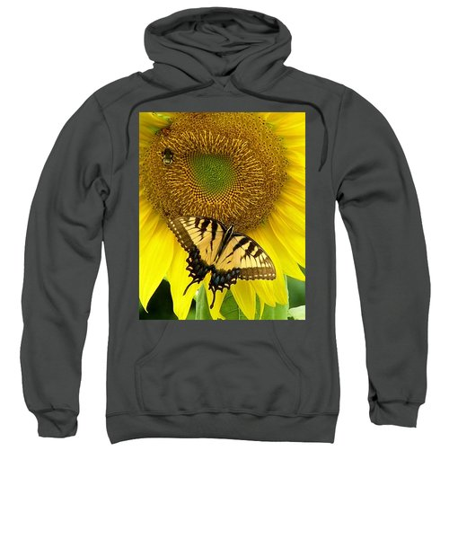 Secret Lives Of Sunflowers Sweatshirt