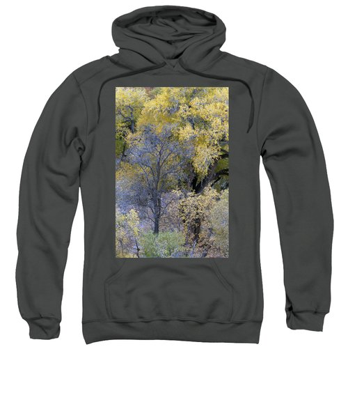 Sedona Fall Color Sweatshirt