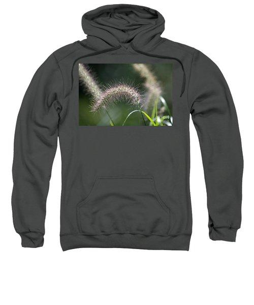 Seedhead 1 Sweatshirt