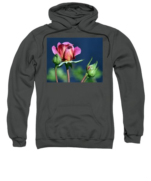 September Rose Sweatshirt