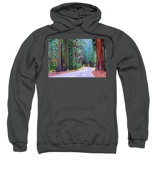 Sequoia Hwy Sweatshirt