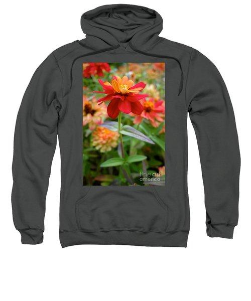 Serenity In Red Sweatshirt