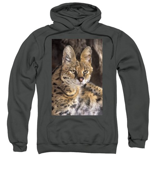 Serval Portrait Wildlife Rescue Sweatshirt