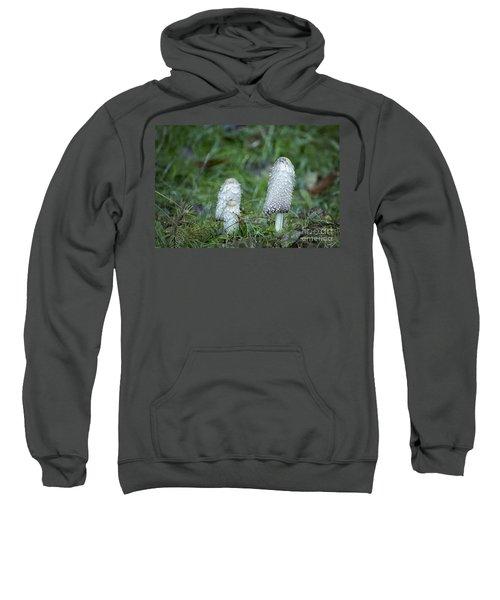 Shaggy Cap Mushroom No. 3 Sweatshirt