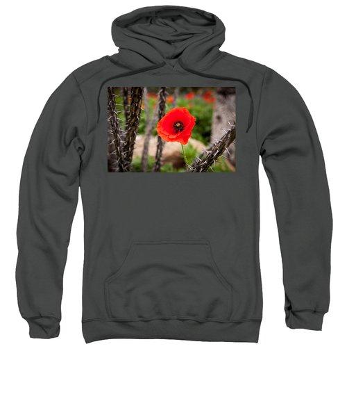 Sharp And Soft Sweatshirt