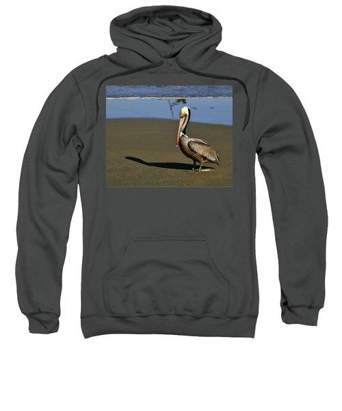 Shy Pelican Sweatshirt