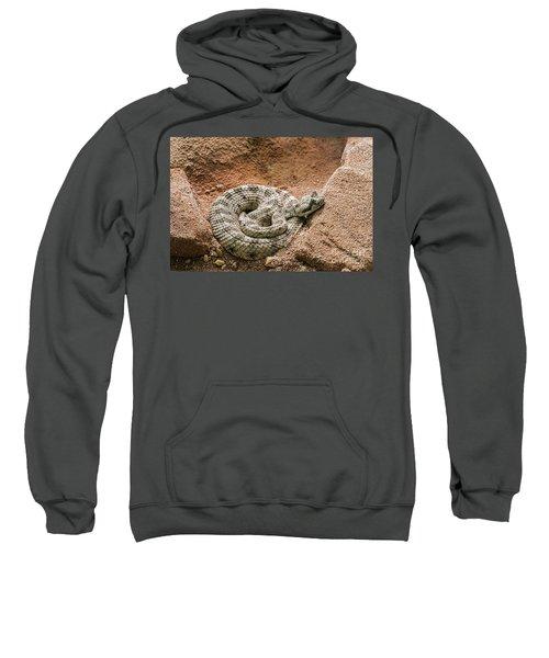 Sidewinder 2 Sweatshirt