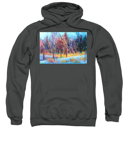 Signs Of Spring - Trees And Snow Kissed By Spring Light Sweatshirt