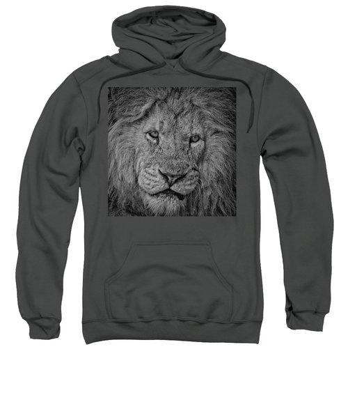 Silver Lion Sweatshirt