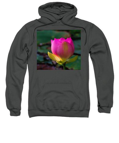 Single Blossum Sweatshirt