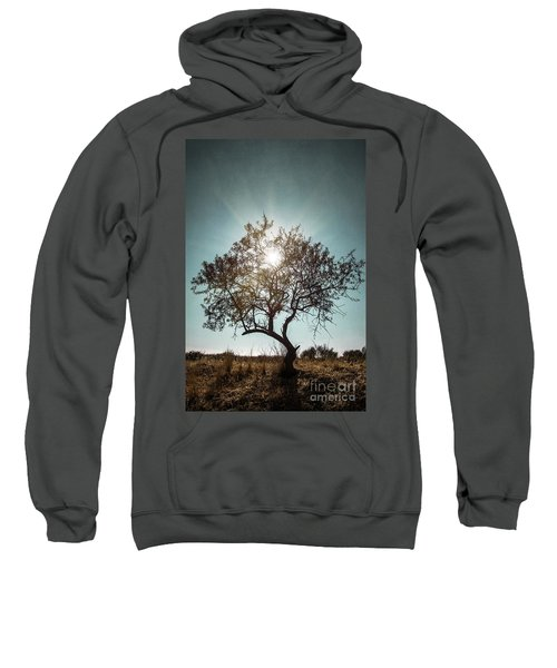 Single Tree Sweatshirt