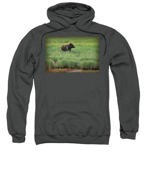 Sitka Grizzly Sweatshirt