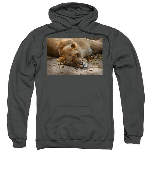 Sleepy Lioness Sweatshirt