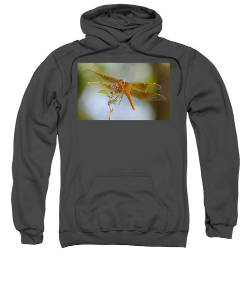 Smile And Be Happy  Sweatshirt