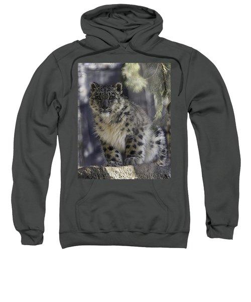 Snow Leopard 1 Sweatshirt