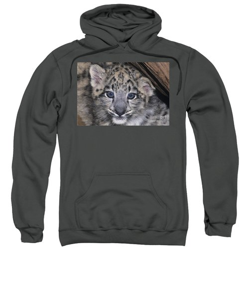 Snow Leopard Cub Endangered Sweatshirt
