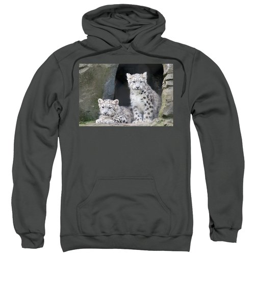 Snow Leopard Cubs Sweatshirt