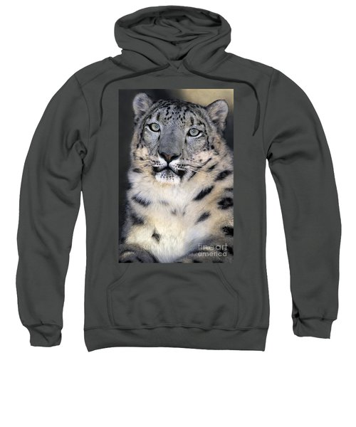 Snow Leopard Portrait Endangered Species Wildlife Rescue Sweatshirt