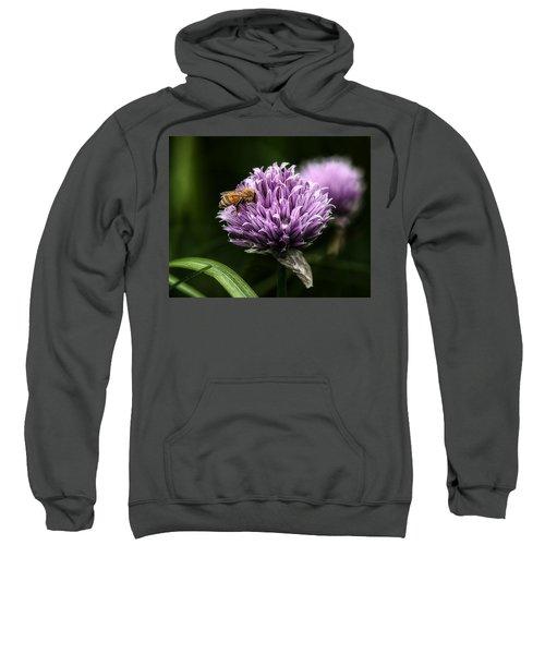 So Into You Sweatshirt