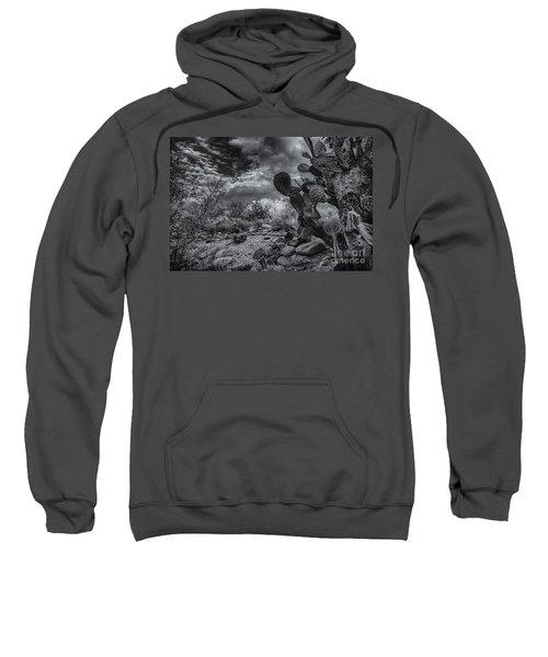 Sweatshirt featuring the photograph Sonoran Desert 15 by Mark Myhaver